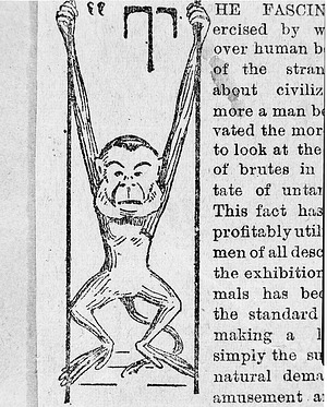 Drawing of a Swinging Monkey at the NZP, by Unknown, Smithsonian Archives - History Div, 77-11422.