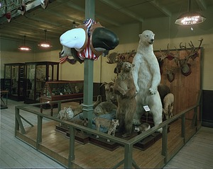 1876 Exhibit, Arts and Industries Building