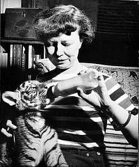 Lucile Quarry Mann Feeding Tiger Cub, Babette