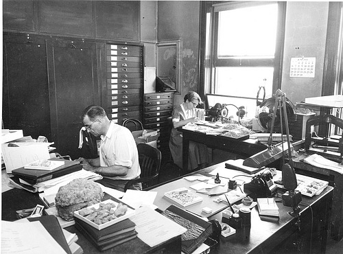Coopers in Paleontology Lab, by Unknown, 1954, Smithsonian Archives - History Div, 85-4051.