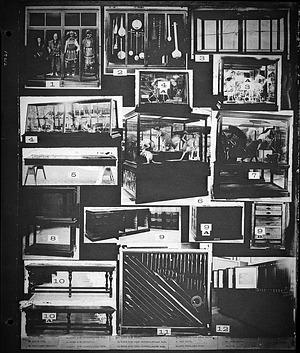 National Museum Exhibit & Storage Cases