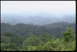 Pemasky Nature Park, a Biosphere Reserve in Kuna Yala, Panama, STRI
