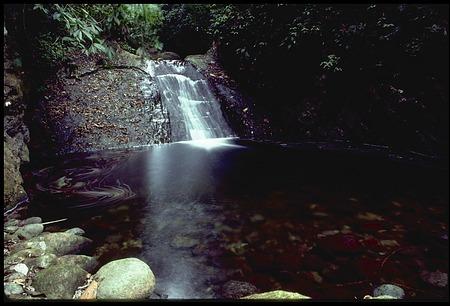 Waterfall from a Small Side-stream on the Rio Grande, near Cana, Darien, Panama, STRI