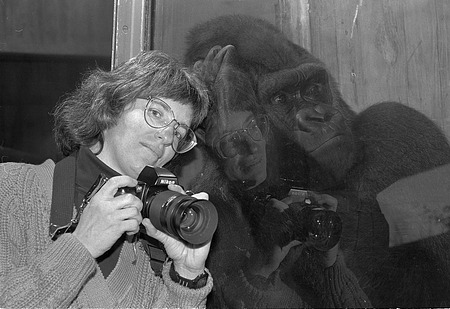 NZP Photographer Jessie Cohen and Mopie