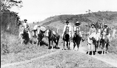 Mary Agnes Chase, Clarissa Rolfs and Group on Expedition in Brazil