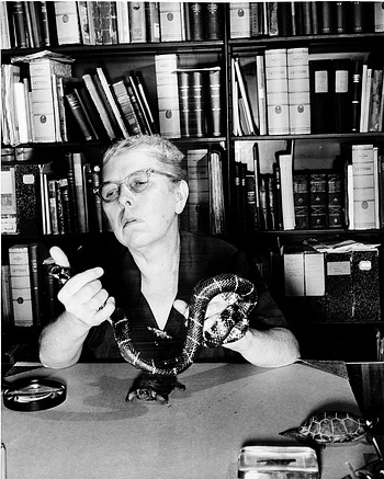 Doris M. Cochran with Snake, 1954, by Unknown, 1954, Smithsonian Archives - History Div, 96-952.
