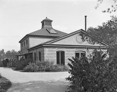 Elephant House, NZP