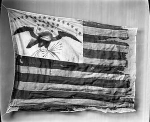 Eagle Device Flag