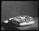 Lace Weaving with Bobbins, 1880, Smithsonian Institution Archives, SIA Acc. 11-006 [MAH-5195].