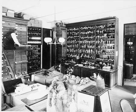 Mammal Laboratory in A&I, 1886