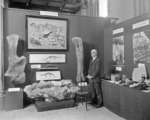 Vertebrate Paleontology Exhibit, Conference on Future