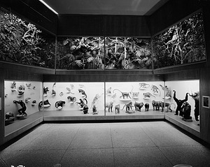 Monkey Exhibit, Hall of Mammals, National Museum of Natural History