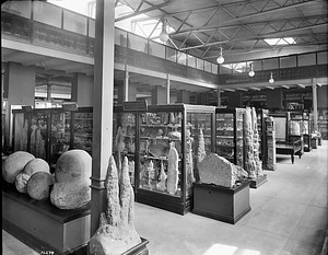 Systematic Geology Hall in the United States National Museum, 1903