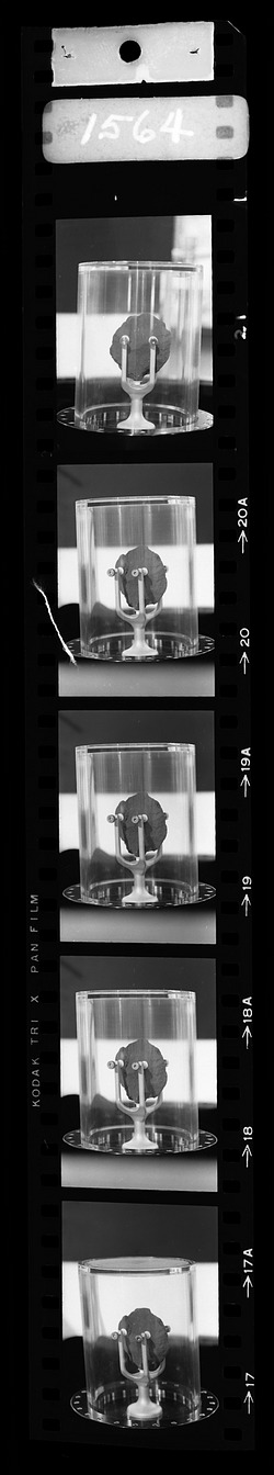 Moon Rock on Exhibit, 1969, Smithsonian Institution Archives, SIA Acc. 11-008 [OPA-1564R2].