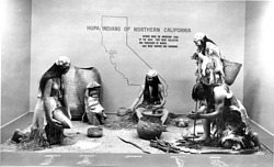 Hupa Indians of Northern California Exhibit, NHB