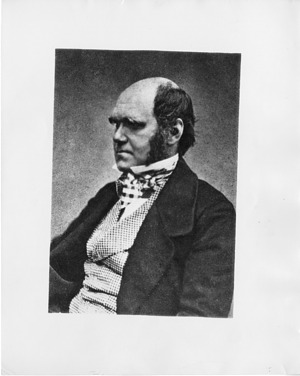 Charles Darwin, by Maull & Fox, c. 1854, Smithsonian Archives - History Div, SIA2008-0865.