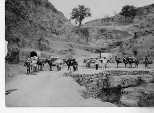 Expedition crossing bridge, Smithsonian Institution Archives, SIA RU007263 [SIA2008-3143].
