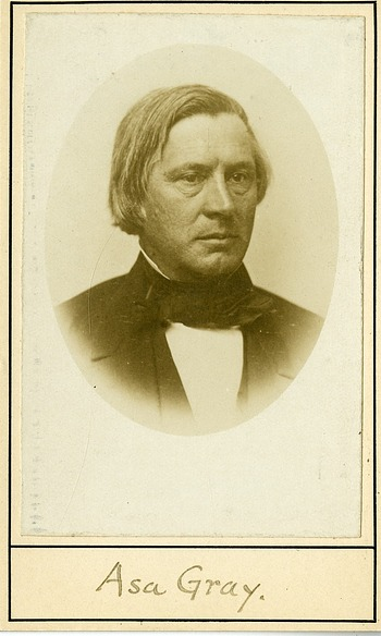 Asa Gray, by Unknown, c. 1855, Smithsonian Archives - History Div, SIA2009-1252.
