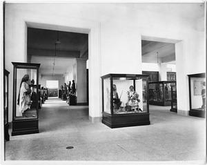 United States National Museum, Exhibit Hall