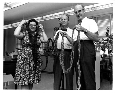 Anthropologists Lucille St. Hoyme, J. Lawrence Angel, and T. Dale Stewart, display a 17 Ã'½ foot