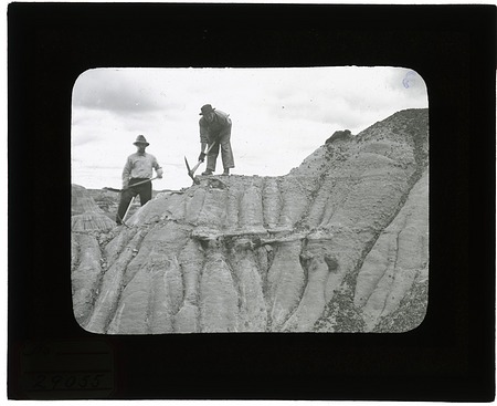 Excavation of Dinosaur National Monument Quarry
