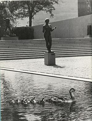 Aristide Maillol's Nymph and Mallard Ducks Outside Hirshhorn Museum and Sculpture Garden
