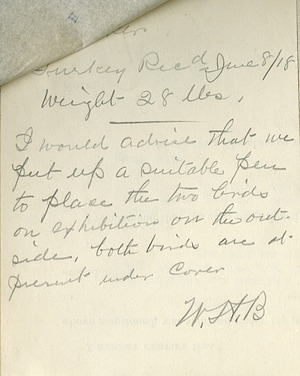Note from Zoo keeper William Blackburne in reference to two famous turkeys