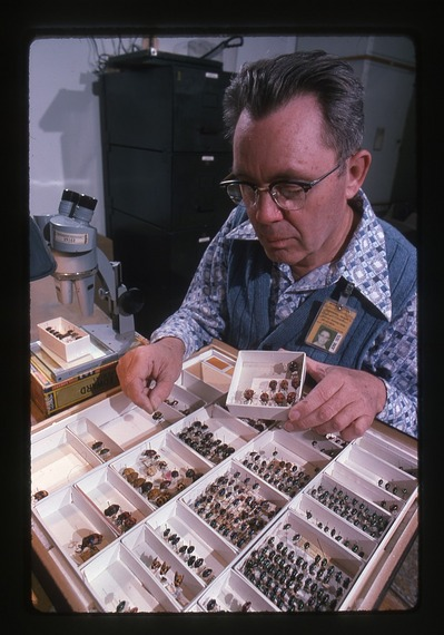 Richard C. Froeschner with Insect Specimens