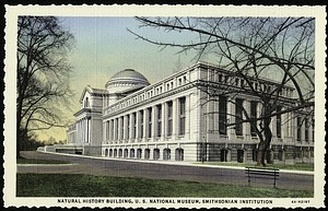 Blank Postcard of the Natural History Building (U.S. National Museum)