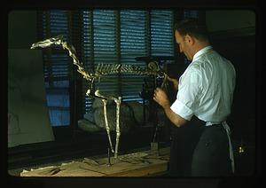 Nick Hotton Working on a Skeleton
