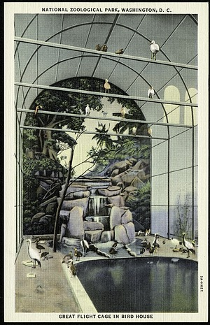 Postcard of Great Flight Cage in Bird House